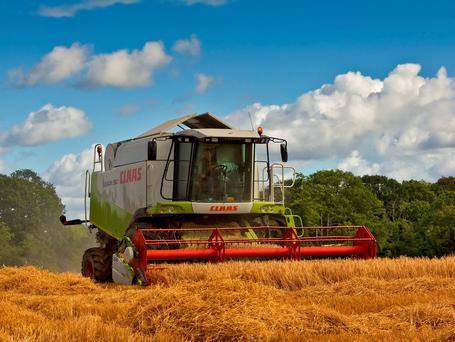 Excellent harvesting conditions are reported, with crop moisture levels expected to drop significantly on the back of higher temperatures.