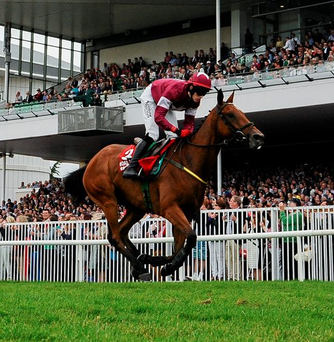 Road to Riches, before going on to win thetote.com Galway Plate. Photo: Barry Cregg/Sportsfile