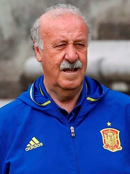 Vicente del Bosque is stepping down from his role as Spain manager Photo: REUTERS / Regis Duvignau