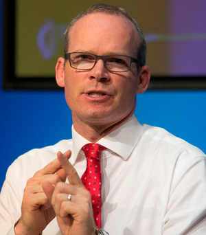 Constituency review: Simon Coveney Photo: Gareth Chaney Collins