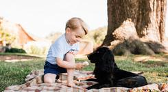 Prince George cheekily feeds his pet dog Lupo ice-cream. Photo: Matt Porteous / PA