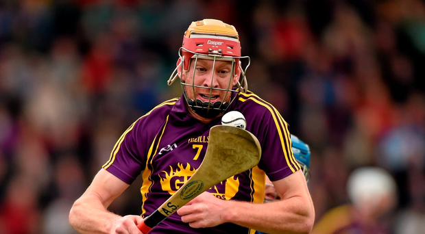 Cruciate victim Andrew Shore has high hopes for his Wexford team-mates. Photo: Sportsfile