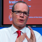 Master plan: Minister Simon Coveney's blueprint to solve the housing crisis has received a cautious welcome, but he has a mammoth task on his hands to make it actually work. Photo: Colin O'Riordan