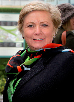 'Defending the deportation decision, Tánaiste and Minister for Justice and Equality Frances Fitzgerald told this newspaper that the State has a right to protect its citizens' Photo: Gerry Mooney