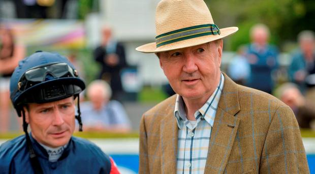 If our experts are right, these two men will be making their way to the winner's enclosure today