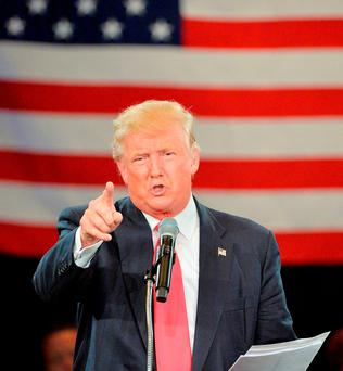 Republican presidential candidate Donald Trump, pictured speaking at a rally in Roanoke, Virginia, has been stoking up resentments in the USA. Photo: Sara D Davis/Getty