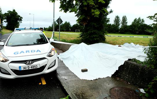 The scene on the Ninth Lock road, Clondalkin, where an alleged sex attack on a woman took place. Picture; Gerry Mooney. 28/7/16