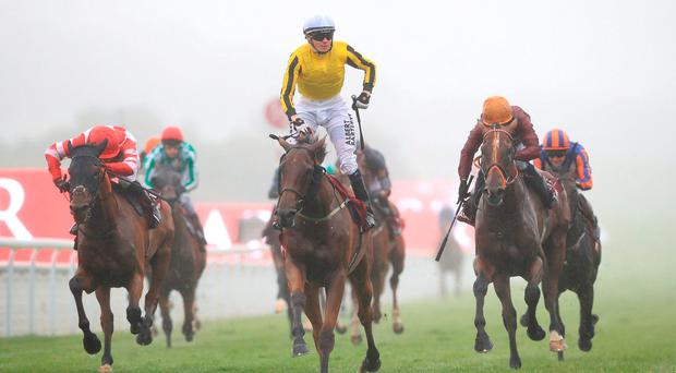 Big Orange ridden by jockey Jamie Spencer (centre) coming home to win the Qatar Goodwood Cup. Photo: PA Wire