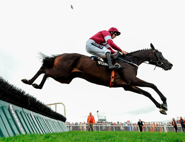 Bel Sas, with Ruby Walsh up, clears the last on their way to winning the Guinness Novice Hurdle. Photo: Sportsfile