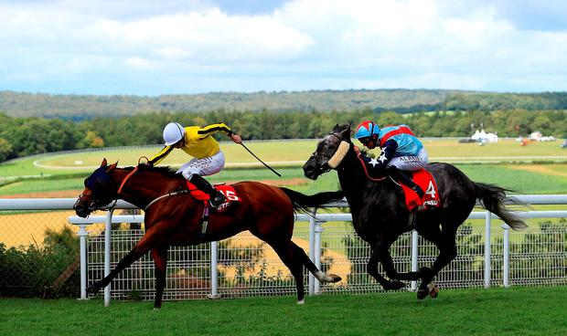 Franklin D ridden by jockey Ryan Moore on the way to winning the Betfred Mile. Photo: John Walton/PA Wire