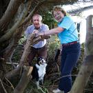 BONDING: Tom and Mary Rowley get to grips with the shrubbery in the garden in Blackrock, Co Louth. Photo: Tom Conachy