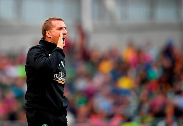 Celtic manager Brendan Rodgers. Pic: Charles McQuillan/Getty Images