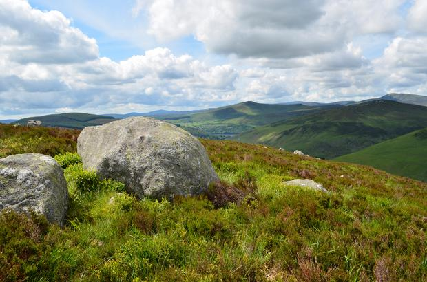 Nama will not sell the parcel of almost 5,000 acres of land it owns in the Dublin Mountains to the State for a cent less than its market value. File photo