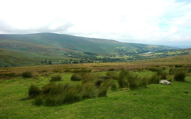 Nama owned land in the Dublin mountains in the background