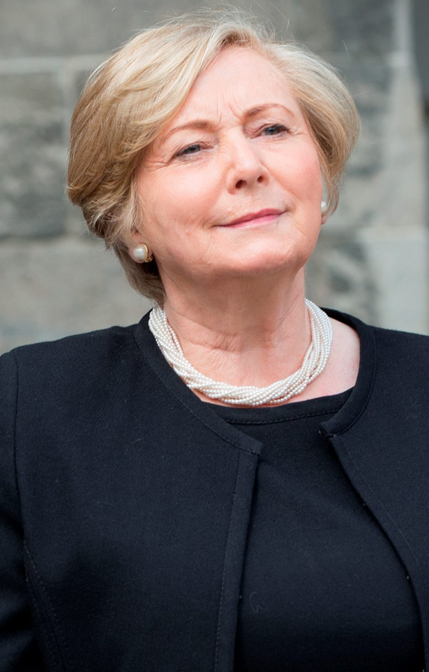 Frances Fitzgerald promised the new unit last February Photo: Fergal Phillips