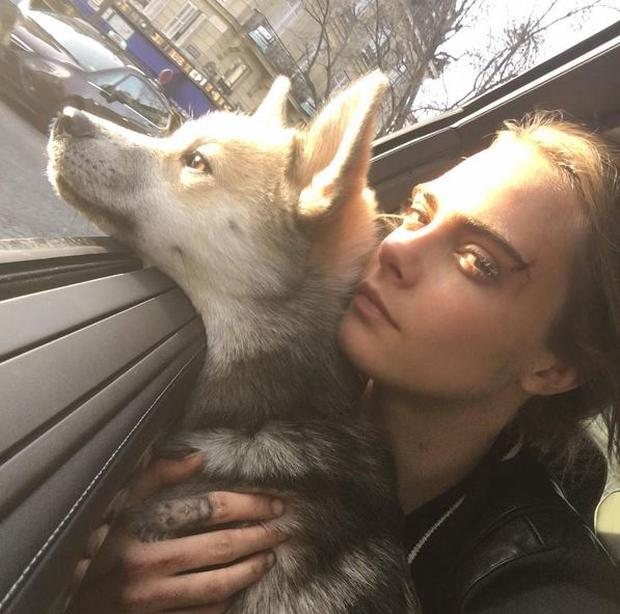 Cara pictured with her husky Leo, who was pictured in an 'anti-barking' collar this week
