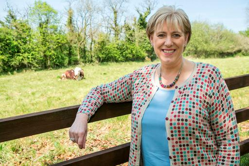 Minister for Regional Development, Rural Affairs, Arts and the Gaeltacht, Heather Humphreys. Photo: Kyran O'Brien