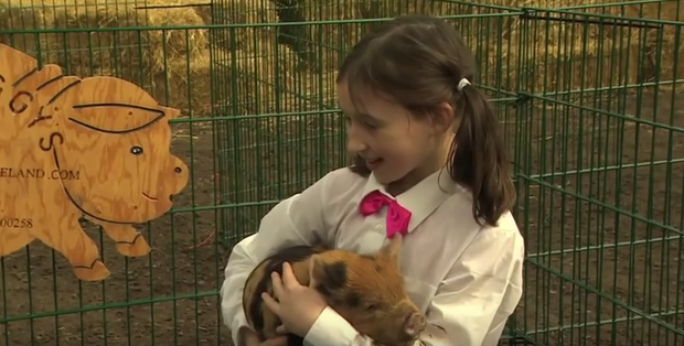 Niamh Duffy and her Kunekune pig on Ear To The Ground. Photo: RTE