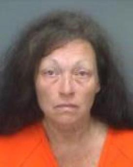 Kathleen Steele, 62, was charged with aggravated manslaughter. (Pinellas County Sheriff's Office)