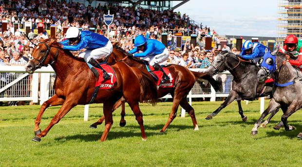 Richard Pankhurst ridden by William Buick leads the field home in the Betfred Hungerford Stakes. Photo: PA Wire