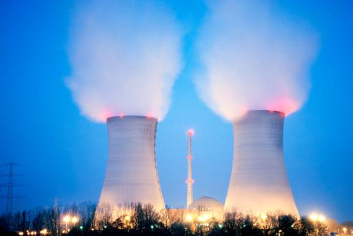 Rhubard and oil waste technology may make reactors redundant (Stock picture)