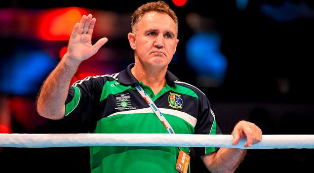 Former Ireland boxing coach Billy Walsh. Picture: Paul Mohan / SPORTSFILE...ABC