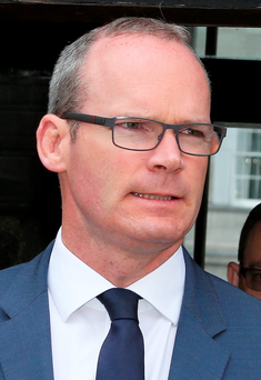 Minister for Housing Simon Coveney Photo: Tom Burke