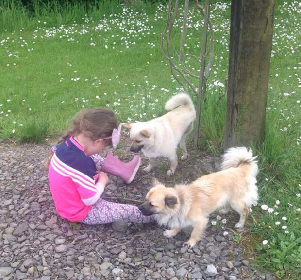 Lila pictured with entered her three-legged friend Buddy and her other dog Charlie