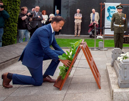 Social Protection Minister Leo Varadkar lays a wreath at the grave of Michael Collins in Glasneven cemetery Photo: Tony Gavin