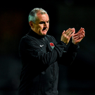 Cork City manager John Caulfied. Photo: Sportsfile