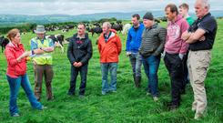 Teagasc Advisor Pauline O'Driscoll is pictured addressing a group at the Teagasc/Carbery open day on the farm of Carbery Quality Milk Award Winners & Drinagh Co-op suppliers Michael & Maguerite Crowley, Bauravilla Upper, Skibbereen. Photo O'Gorman Photography.