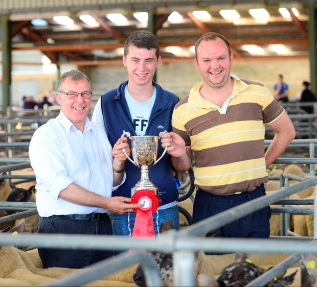 Pat Kenny and James Nolan, Roundwood, first prize winners in the Suffolk Hoggets at the Suffolk Show and Sale at JP&M Doyle Mart, Blessington. They are pictured receiving the cup from Stephen Doyle. Photo: Adrian Melia
