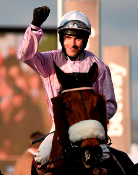 Any Currency with jockey Aidan Coleman. Photo: Cody Glenn/Sportsfile