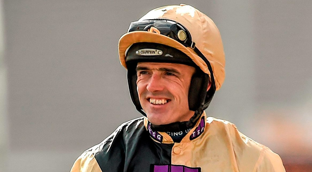 """Walsh was described as being """"stiff and sore"""" and was stood down for the evening after his crashing tumble from Muthaza when leading at the fourth flight. Picture: Seb Daly / SPORTSFILE"""
