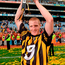 Gladiators who have given so much for our benefit: Henry Shefflin. Photo: Sportsfile