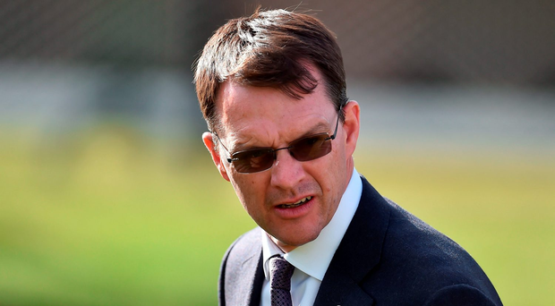While O'Brien intimated to the Irish Independent that US Army Ranger was a more probable player in the KPMG Enterprise Stakes, he was not ruling the Derby second also tackling the €1.25m feature tomorrow week. Photo by Brendan Moran/Sportsfile