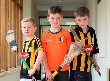 Pupils Allen Larkin (9), Sean Bergin (10), cousin of Tipperary Hurler Ciaran Bergin, and John Drennan (10) at St Patrick's de la Salle National School in Kilkenny Photo: Frank McGrath