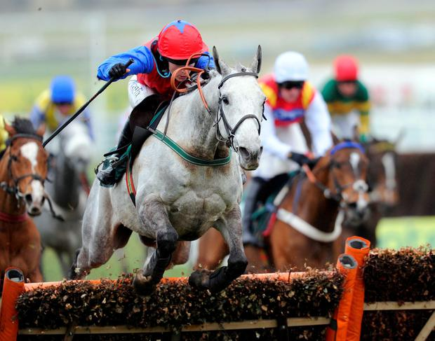Thousand Stars, with Katie Walsh up, on the way to winning the Vincent OBrien County Handicap Hurdle at Cheltenham in 2010. Photo: Getty Images