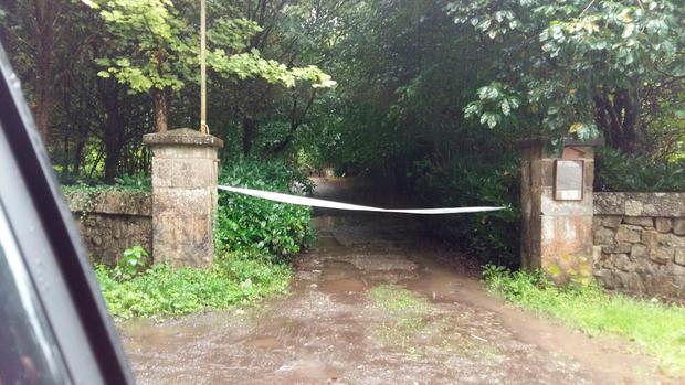 Scene where a body was found in Rahin Woods Co Kildare