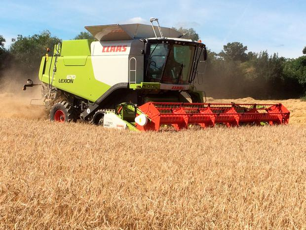 Henry and David Stacey's new Claas Lexion 670TT in full flights cutting barley near Gorey, Co Wexford. Photo: Jonathan Leech
