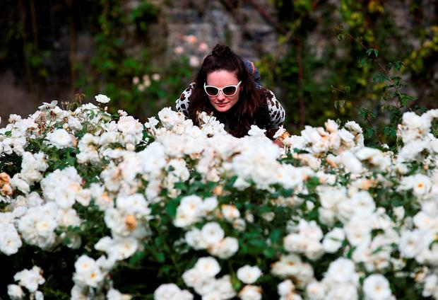 Sorcha McGuire at the rose garden in the National Botanic Gardens in Dublin. Photo: Brian Lawless/PA Wire