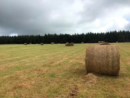 The 358ac grass farm is located 9km from Midleton and is guided at €3m