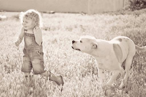 A psychologist will be able to help a child overcome a fear of dogs