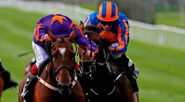 Wicklow Brave and Frankie Dettori (left) edge out Order Of St George. Photo by Alan Crowhurst/Getty Images