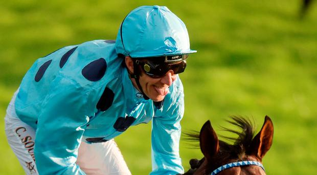 Almanzor, with Christophe Soumillon. Photo by David Fitzgerald/Sportsfile