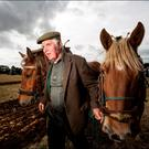 Gerry Dunne taking part in the ploughing match at the Knockbridge, Co Louth vintage day held on Sunday. Photo: David Conachy.