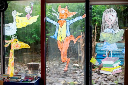 Caitriona's window paintings in Ennistymon library Picture: Mark Condren
