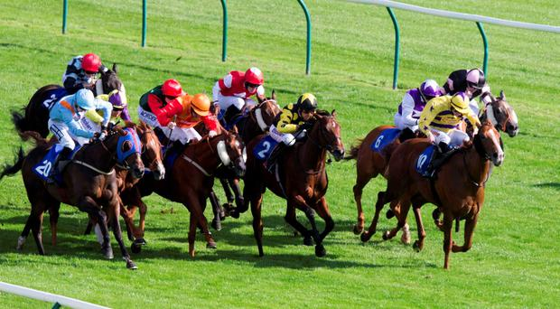 Graham Lee steers Lincoln (No 2) to victory in yesterday's five-furlong handicap at Ayr. Photo: PA