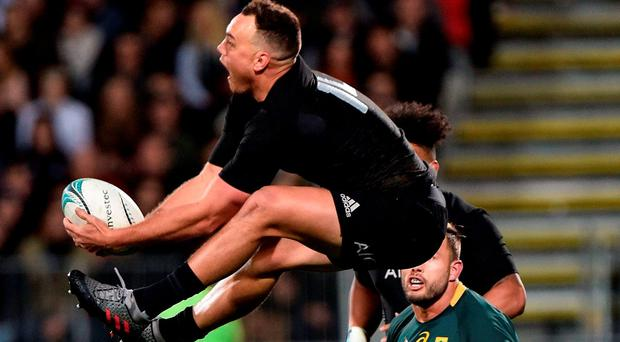 New Zealand's Israel Dagg (Top) jumps for the ball with South Africa's Francois Hougaard (Back) during the rugby Test match between New Zealand and South Africa at AMI Stadium