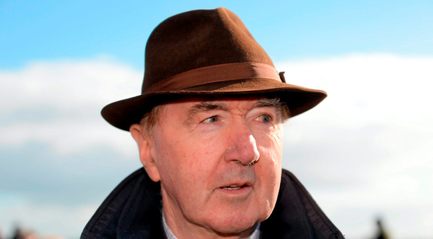 Dermot Weld is running Discipline in a Group Three at Gowran. Photo: Sportsfile